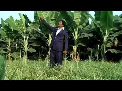 Na Pranamu Na Jeevamu Neevenayya - Telugu Christian Song