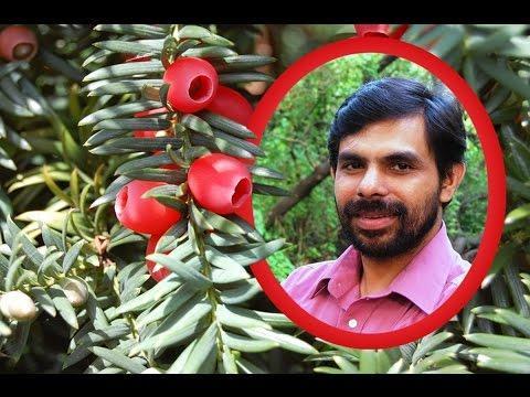 Dhaivame Njan Oru Papiyaanu | KESTER | Malayalam Christian Devotional Song