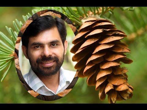 Kashtappaadil Njan - KESTER - Malayalam Christian Devotional Song
